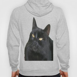 Relaxed Black Cat Portrait Vector Isolated Hoody