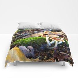 Naturals Comforters