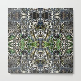 Contorted Filbert Metal Print
