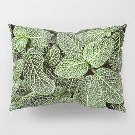 Just Green Pillow Sham
