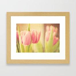Vintage Tulips Framed Art Print