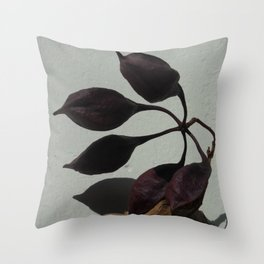 Sun-drenched Seed Pod Throw Pillow