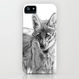 Maned wolf, Chrysocyon brachyurus iPhone Case