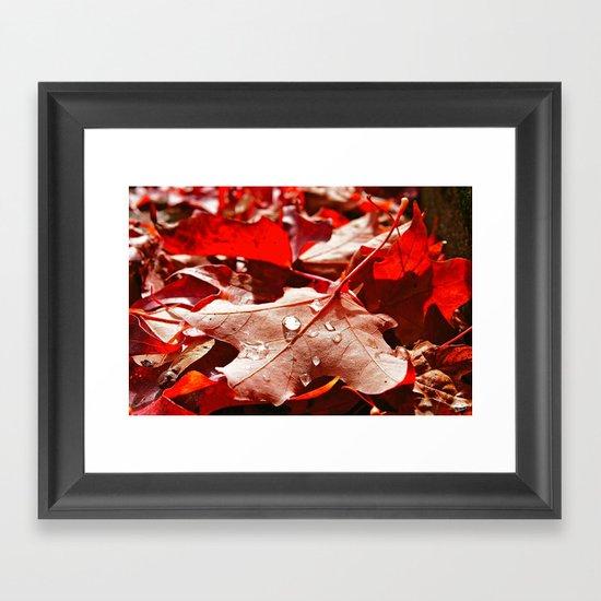 Autumn red Framed Art Print