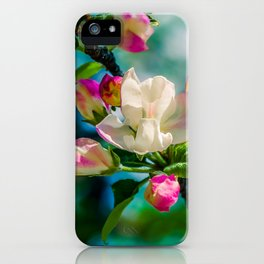 Crabapple flower and buds iPhone Case