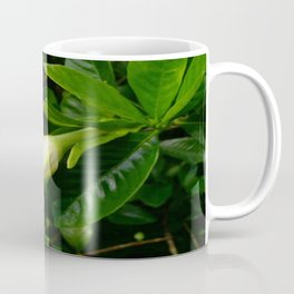 Ready to Bloom Coffee Mug