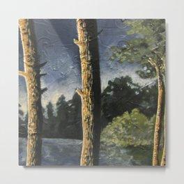 Lake Woodsman View Metal Print