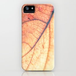 Abstract Leaf 3 iPhone Case