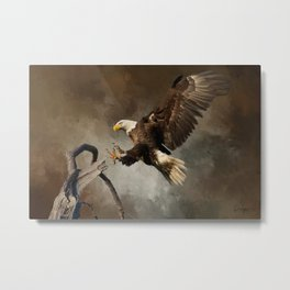 Fly Like An Eagle Metal Print
