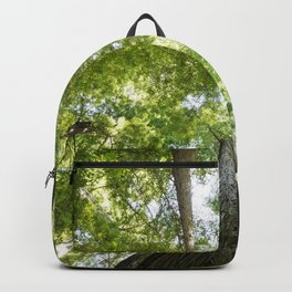 The Redwood National and State Parks Backpack