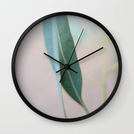 Eucalyptus leaves in the park Wall Clock