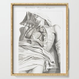 Human Anatomy Art Print LUNG AORTA HEART Vintage Anatomy, doctor medical art, Antique Book Plate, Me Serving Tray