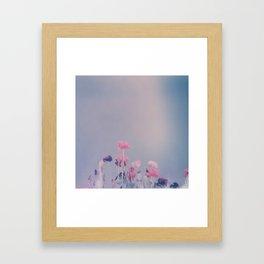 Carlsbad Flowers Framed Art Print