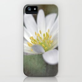 ...all nature is your congratulation... iPhone Case