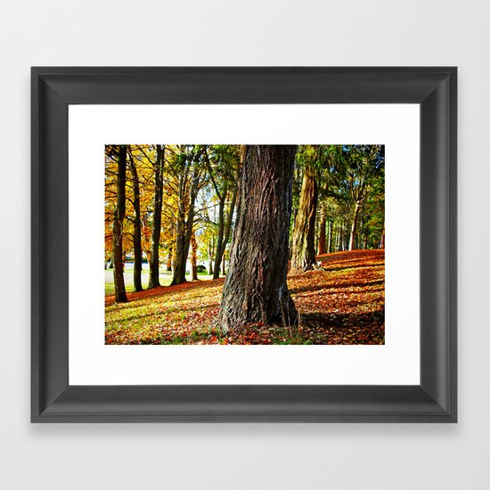 Late Autumn Framed Art Print