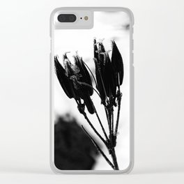 Dormant Clear iPhone Case
