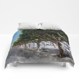 Trapani art 10 Comforters
