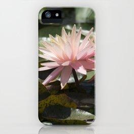 Longwood Gardens - Spring Series 304 iPhone Case