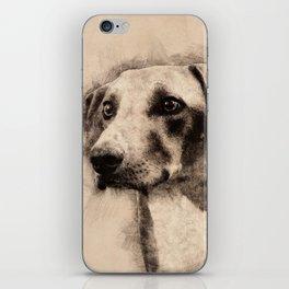 Azawakh Sighthound Sketch iPhone Skin