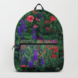 Good buy my Summer Backpack