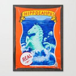 Hippocampus Sideshow Banner Canvas Print