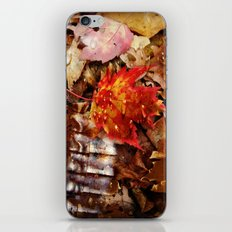 The Armor of Autumn iPhone & iPod Skin