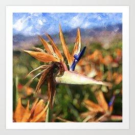 Crane Flower | Watercolor Art Print