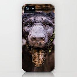 Stone Lion Head iPhone Case