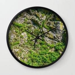 Plants growing on stone wall (Surface) Wall Clock