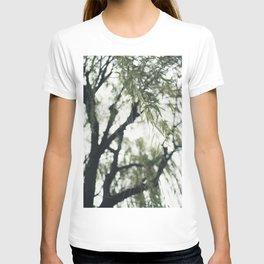 Beneath the Willow Tree T-shirt