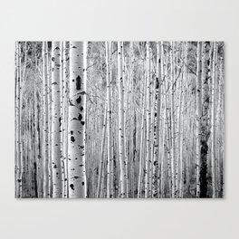 Aspen Tree Maze Canvas Print