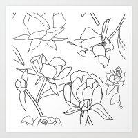 Roses, Black Line Drawing on White Art Print