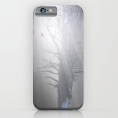 Sunrise in the Trump Forets. iPhone 6s Slim Case