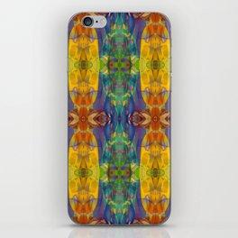 Blue Rainbow iPhone Skin