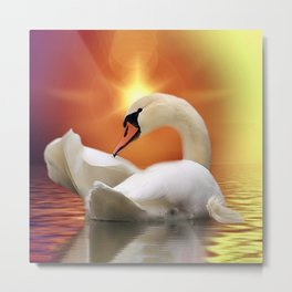 Mystical Swan in Golden Light Metal Print