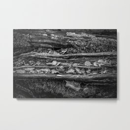 Bark in Black and White Metal Print