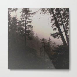Oregon Coastal Forest Metal Print