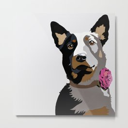 Jasper in pink Metal Print