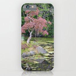 Lovely japanese maple tree iPhone Case