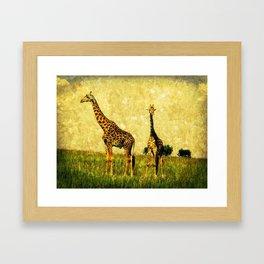 African Giraffe - Walking Africa Framed Art Print