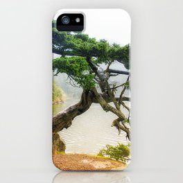 Pining For You Orcas Island Pine Tree iPhone Case