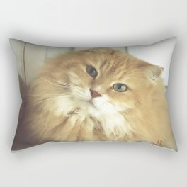 Siberian cat. Portrait of Mr. Cesare Rectangular Pillow