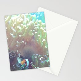 Clown Fish Stationery Cards