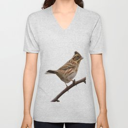 Rustic Bunting Bird Vector Isolated Unisex V-Neck