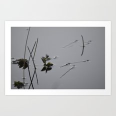 Surface Tension  Art Print