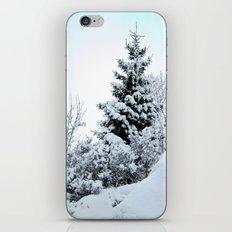 Natures Christmas Tree iPhone & iPod Skin