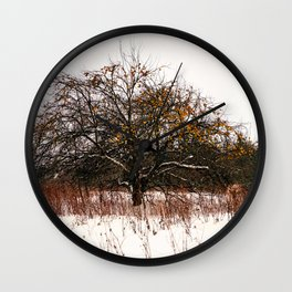 Snow apple Wall Clock
