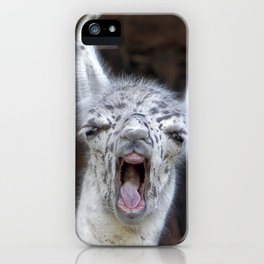 Young Lama with a big mouth | Junges Lama mit grosser Klappe iPhone Case