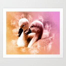 Cygnet Swan Siblings Art Print