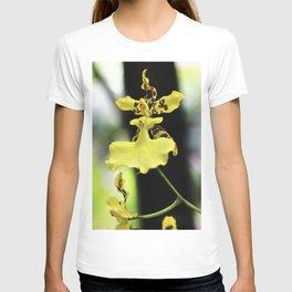 Hadas en el jardín T-shirt